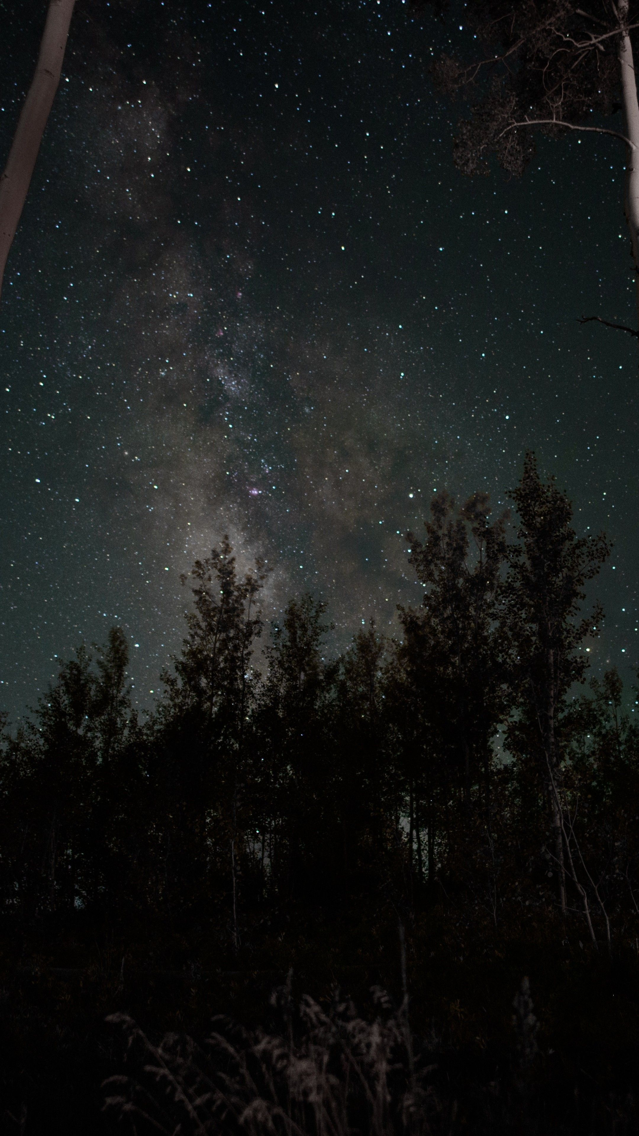 64+ Starry Night Wallpapers on WallpaperPlay Night sky