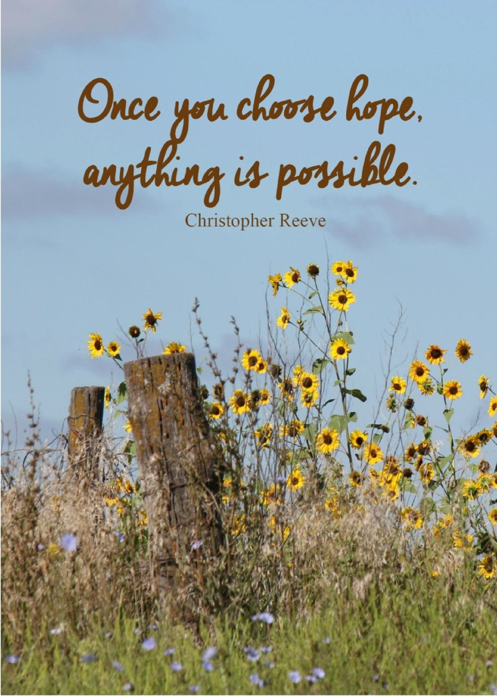 Once You Choose Hope Anything Is Possible Christopher Reeve Send
