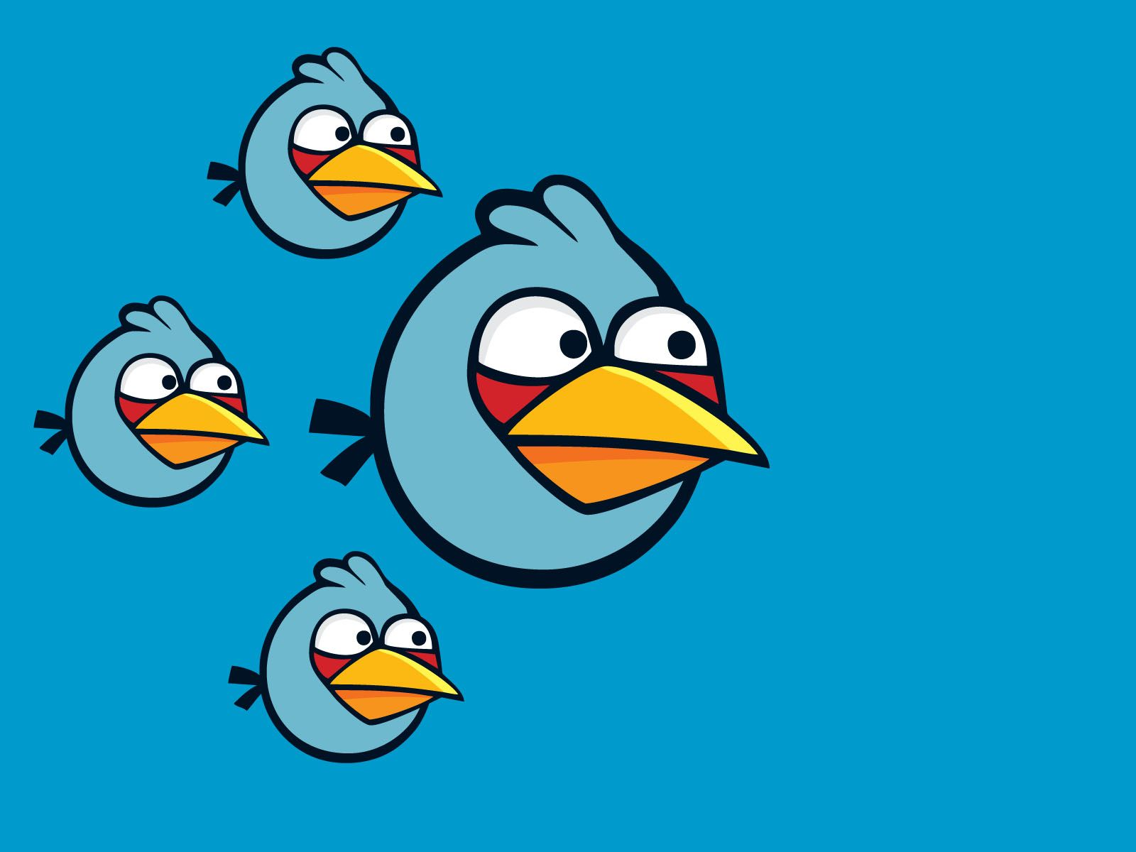 Angry Animals Google Search: Blue Angry Birds - Google Search