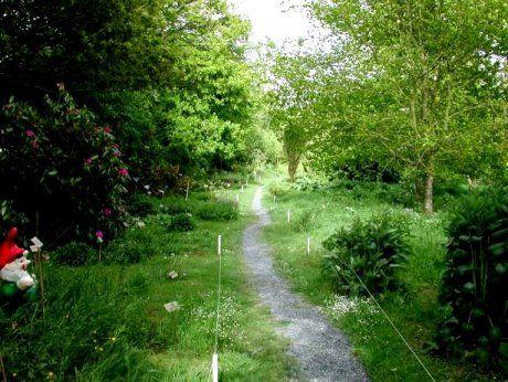 Pretty little garden path