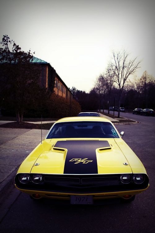 71 Dodge Challenger Whenever I Get Like 6 Inches Close To This Car