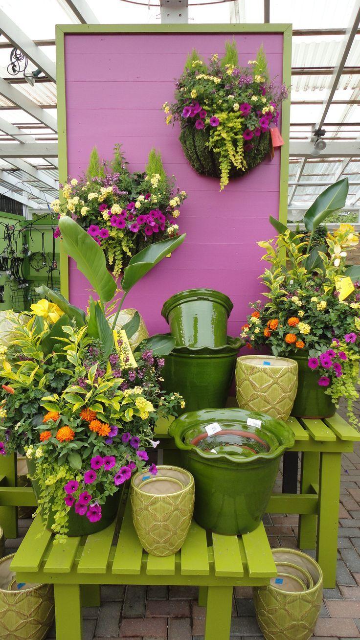 I want that large ruffle edged pot! Garden center