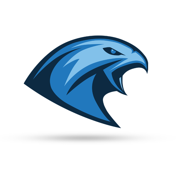 Tychy Falcons American Football Team On Behance Football Logo Design Sports Logo Inspiration American Football