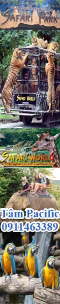 tour du lich safari bangkok thailand
