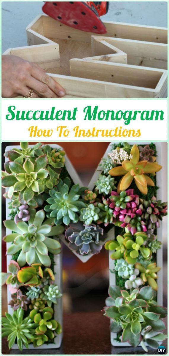diy succulent monogram letter instruction diy indoor succulent garden ideas projects - Indoor Succulent Garden