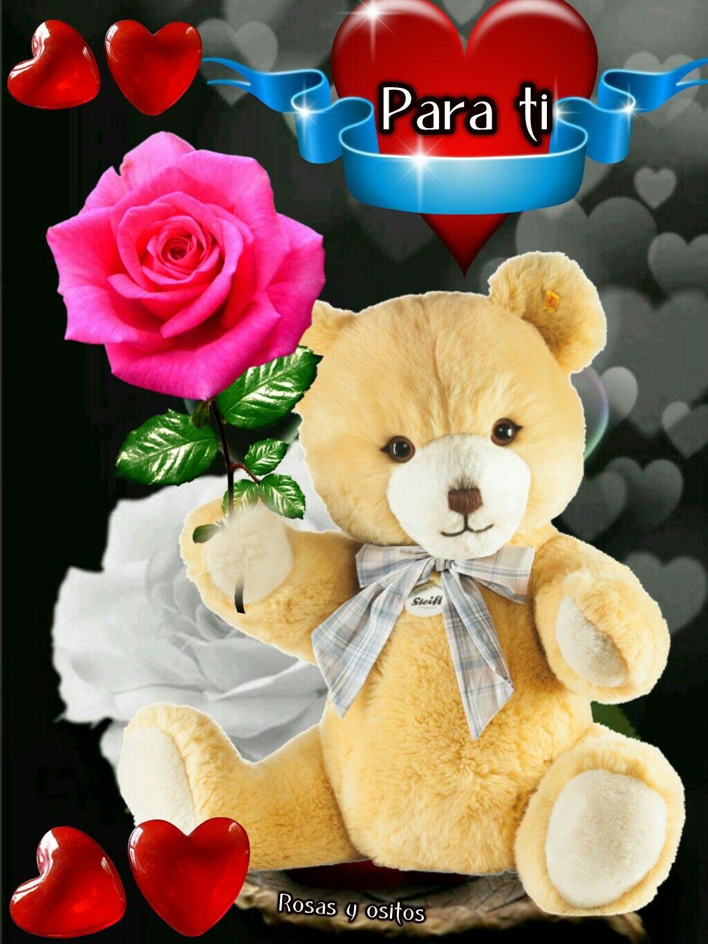 Poemas De Amor Osos Rosas Y Corazones Frases De Amor Good Night Blessings Happy Birthday Me Gods