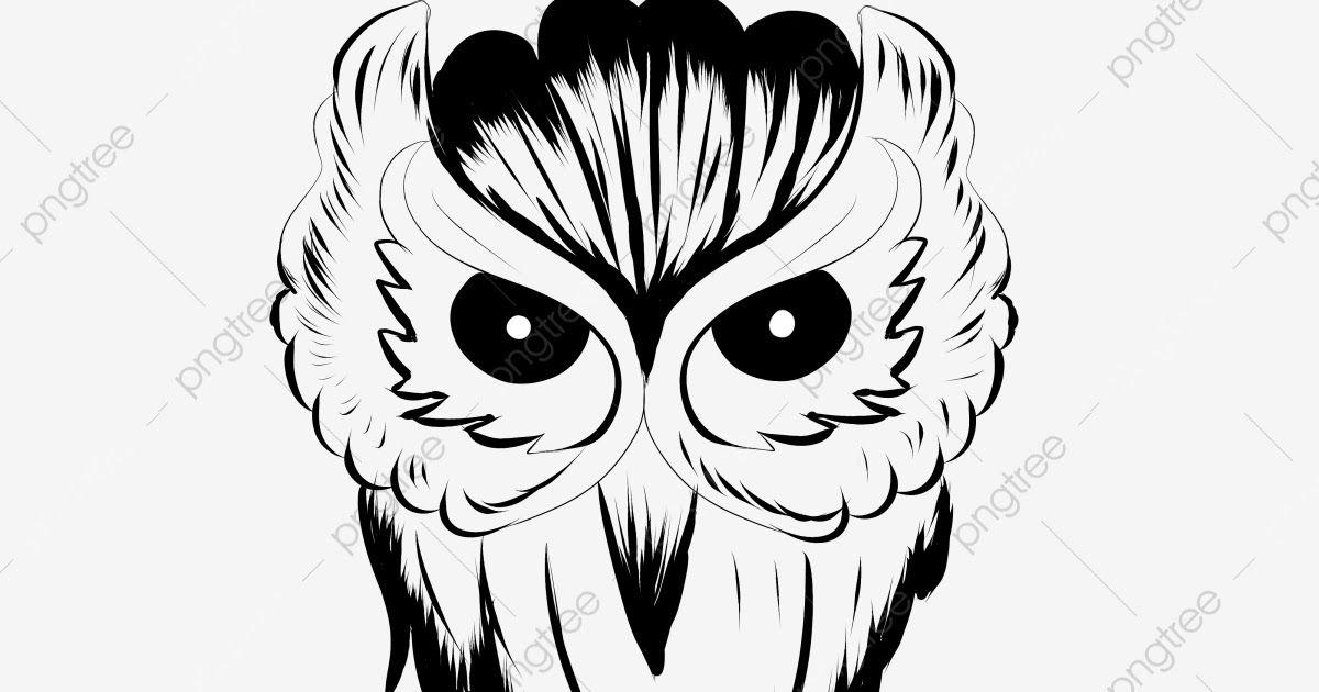 Fantastis 12 Gambar Tato Kepala Tengkorak Di 2020 Tato Burung Hantu Tato Burung Tato Naga