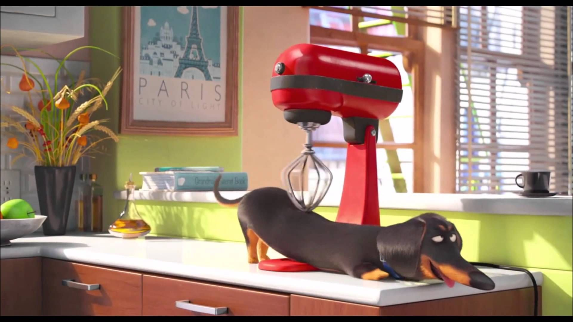 The Secret Life of Pets (2016) Dog And Mixer Funny scene