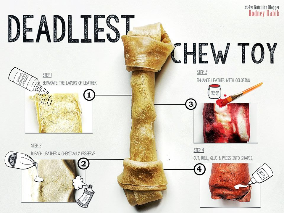 The Most Dangerous Pet Chew Ever Rawhide How Can One Of The Most