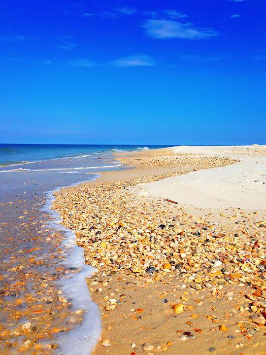 Beach In Cape San Blas Florida