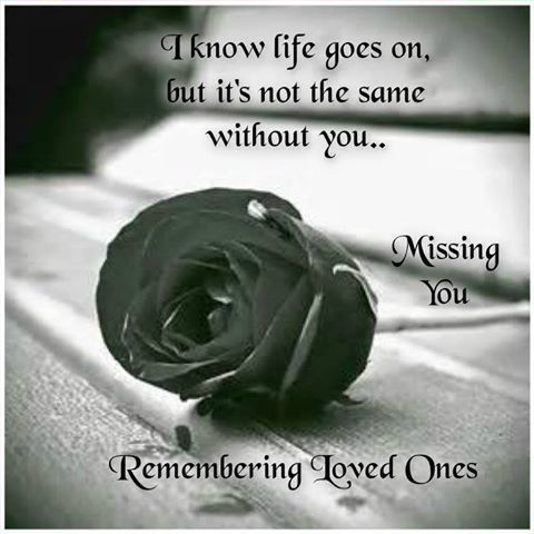 Quotes About Death Of A Loved One Remembered Magnificent Remembering Loved One Love Quotes Quote Miss You Sad Rose In