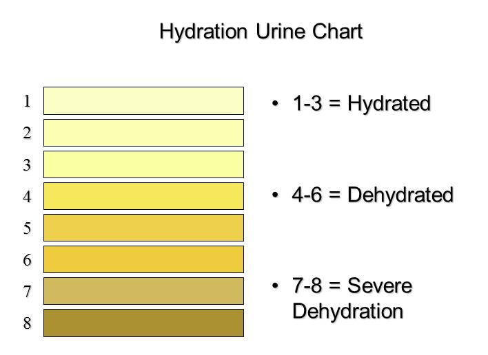 Urine Color Chart Urine Indication Of Hydration Colour Chart Best