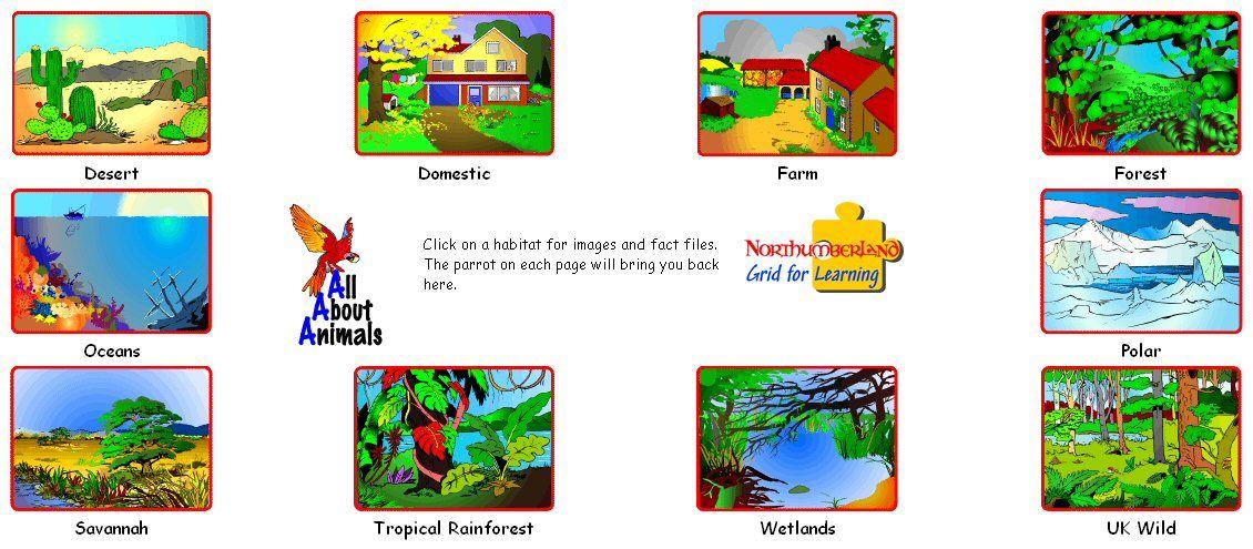 habitats | Homeschool Habitats | Pinterest | Animal habitats and ...