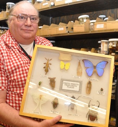Biological sciences teaching technician and museum ...