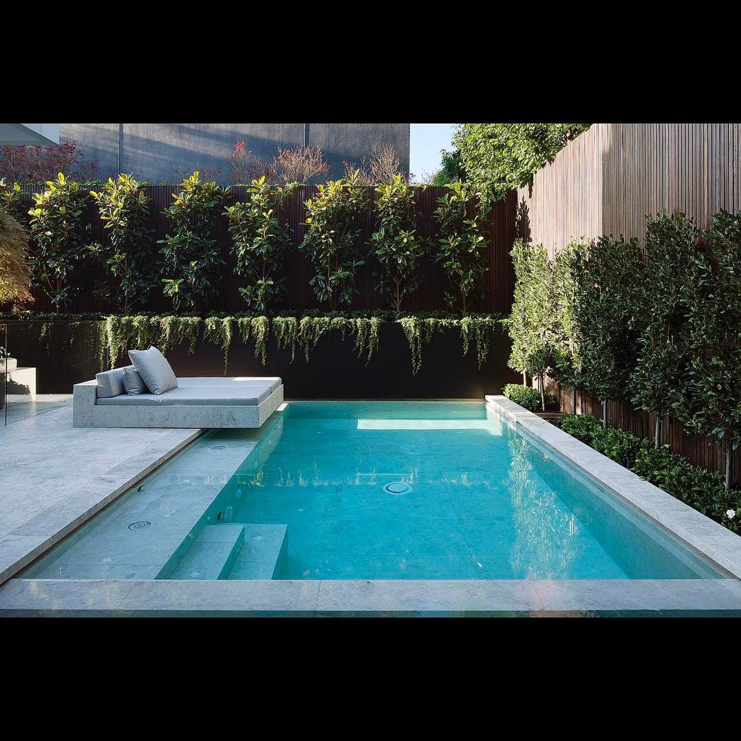 1 471 Likes 20 Comments Nicole Slater Nicoleroseart On Instagram Flying Solo At The Backyard Pool Landscaping Small Pool Design Swimming Pools Backyard