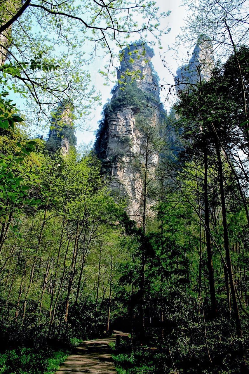 Zhangjiajie, China.