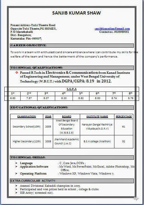 curriculum vitae pattern sample template example ofexcellent curriculum vitae resume cv format with career