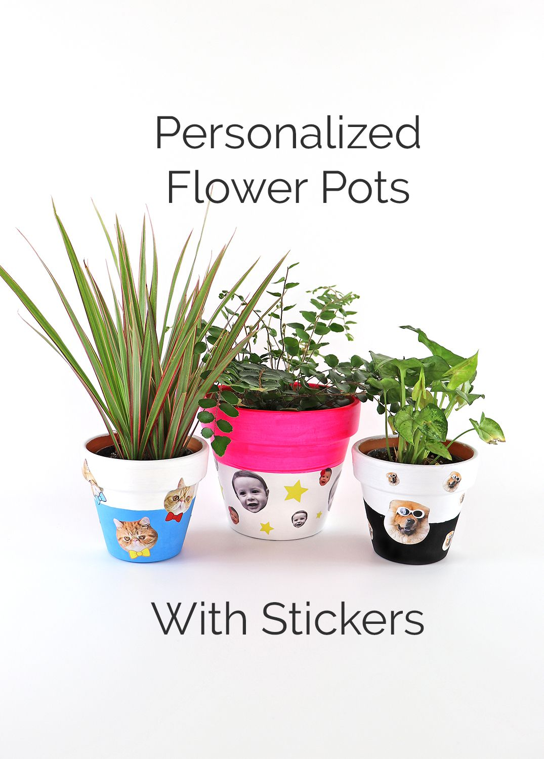 Diy Personalized Pots Personalized Flower Pot Flower Pots Diy