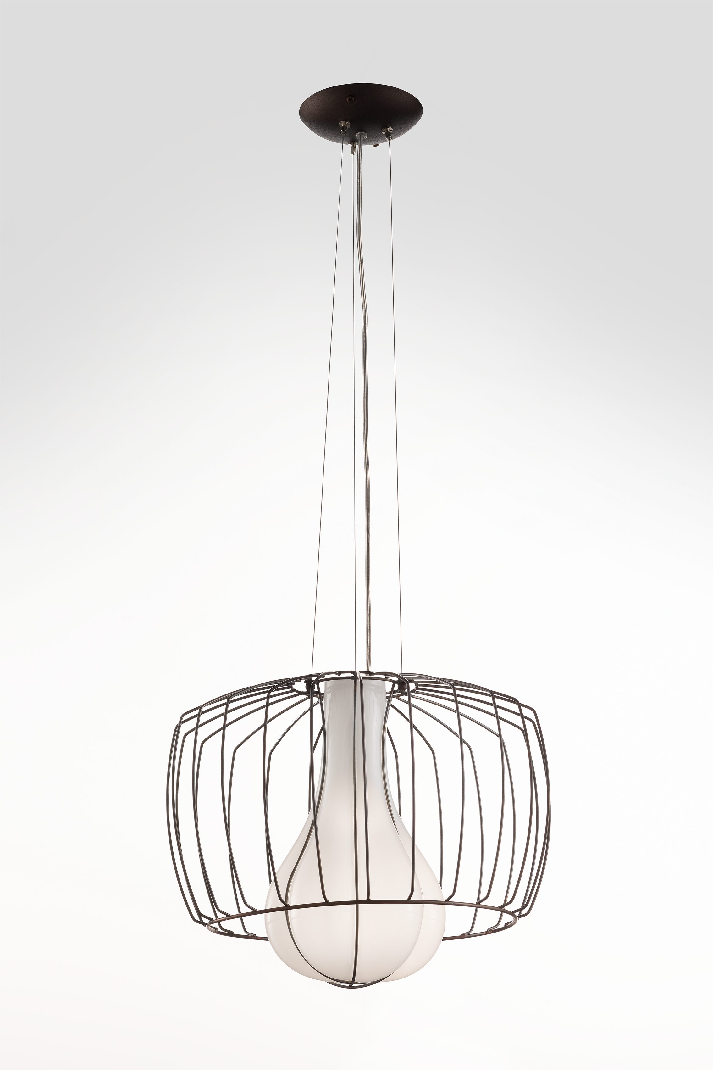 A whole  ru ure, only partly blown, allows the prote ion of the caged glass which  ands out in the middle of the pendant light.