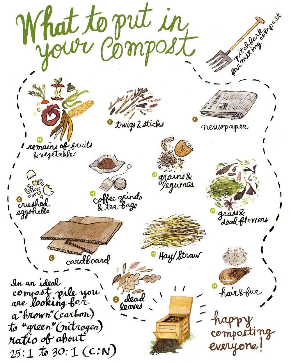 Mini Composting Poster 8.5x11   Etsy