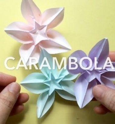 Origami Carambola Or Spring Flower