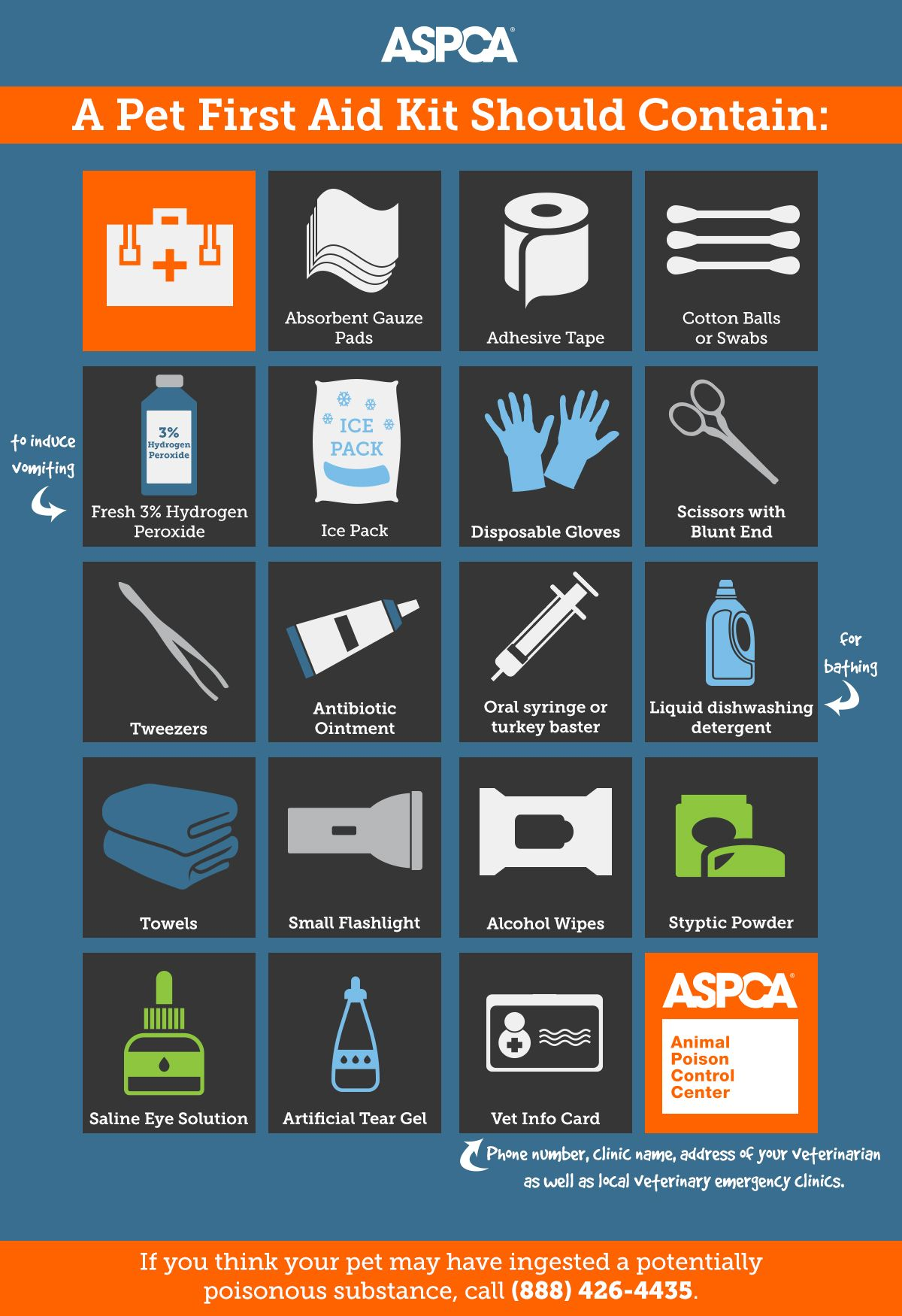 Disaster Prep Kits What You Need To Keep Your Pets Safe