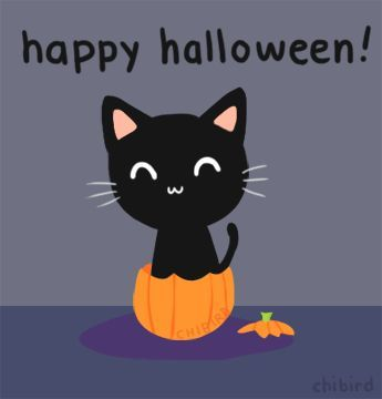 Happy Halloween Pumpkin Halloween Happy Halloween Jack O Lantern Halloween  Gif Trick Or Treat Black Cat Animated Halloween