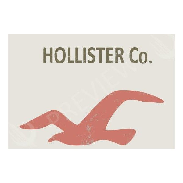 Hollister Eagle Logo photo - download this photo for free ❤ liked on  Polyvore featuring pictures