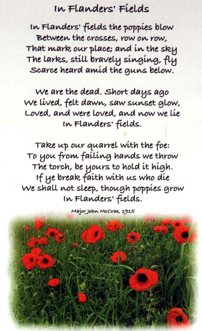 the despondency of war in john mccraes in flanders field In 1918, lieut john philip sousa wrote the music to in flanders fields the poppies grow words by lieut-col john mccrae [18] the cloth hall of the city of ieper ( ypres in french and english) in belgium has a permanent war museum [19] called the  in flanders fields museum , named after the poem.