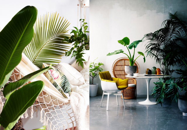 20 Id Es Pour Une D Co Exochic Tropical Interior Interiors And Bedrooms