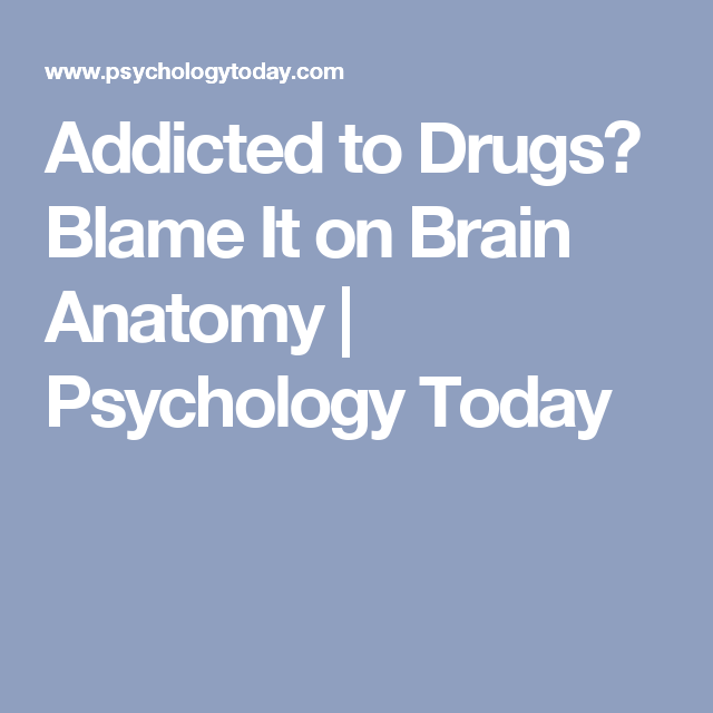 Addicted to Drugs? Blame It on Brain Anatomy | Psychology Today ...