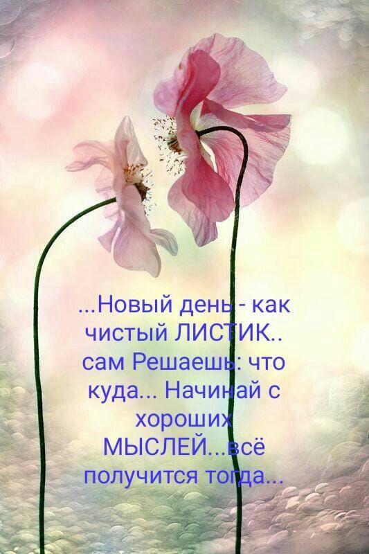 Pin Di Irina Su Sprüche Russisch Guten Morgen Russische
