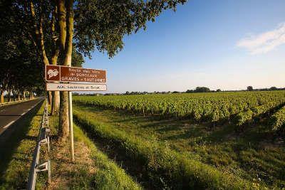 Panneaux De Signalisation De La Route Des Graves Route Des Vins De Bordeaux Guide Du Tourisme De La Gironde Aquitaine Gironde Vin Bordeaux Tourisme