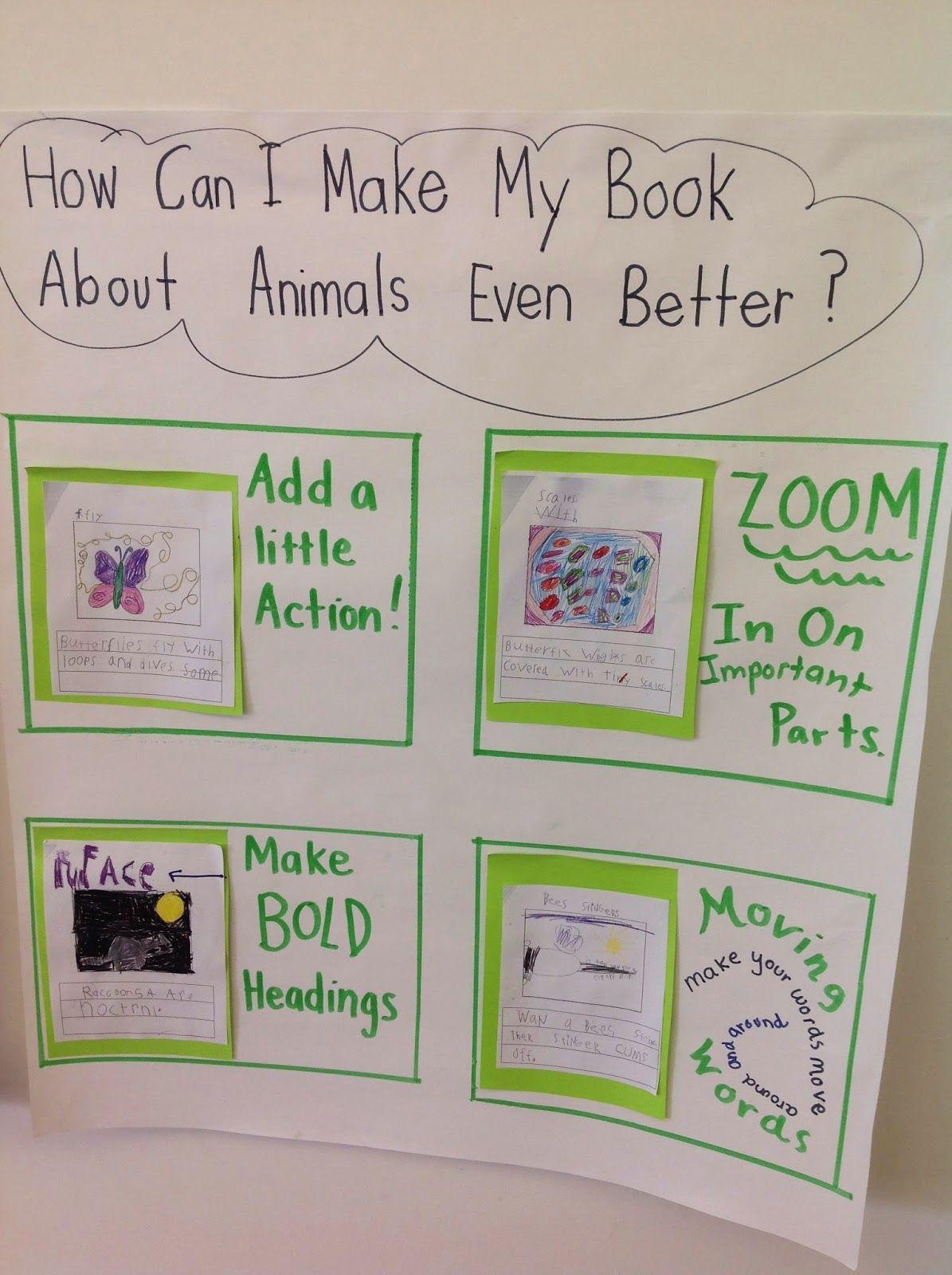 Room 5 On Alphabet Lane: Animal Books