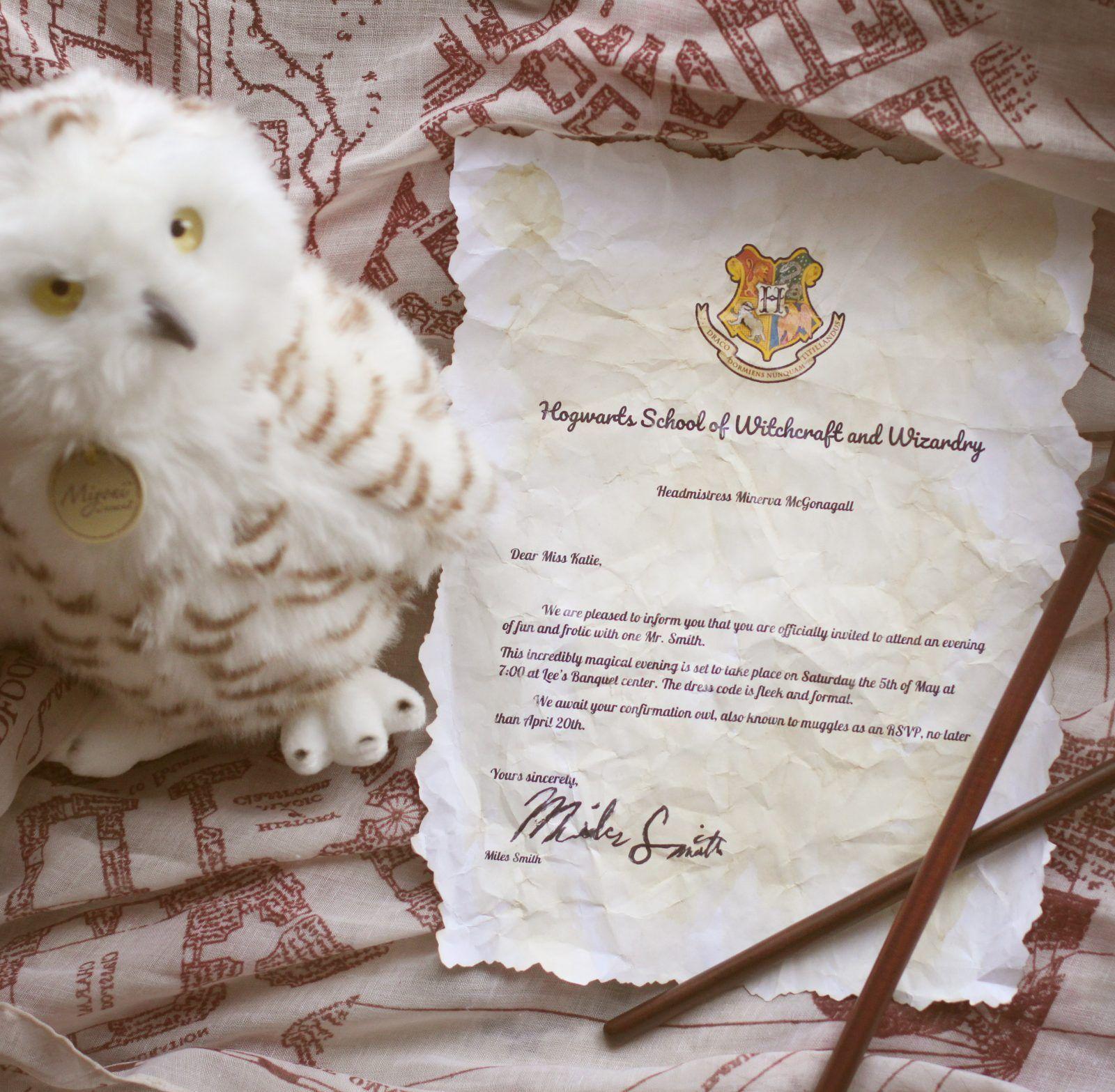 1 Harry Potter Promposal Ideas With Stuffed Owl Promposal Stuffedanimal Personalized Cute Best Harrypotter Wizard Best Prompictureideas Singleprompic
