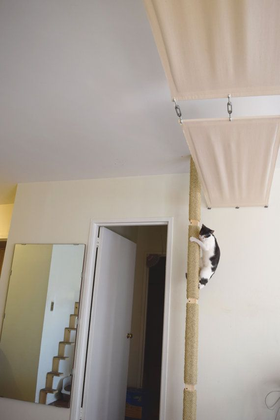 Cat Pole Cats Can Climb From Floor To Ceiling For Play And