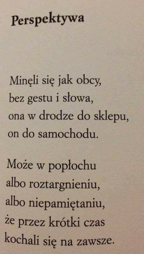 Wisława Szymborska Wiersze Cytaty życiowe I Najlepsze Cytaty