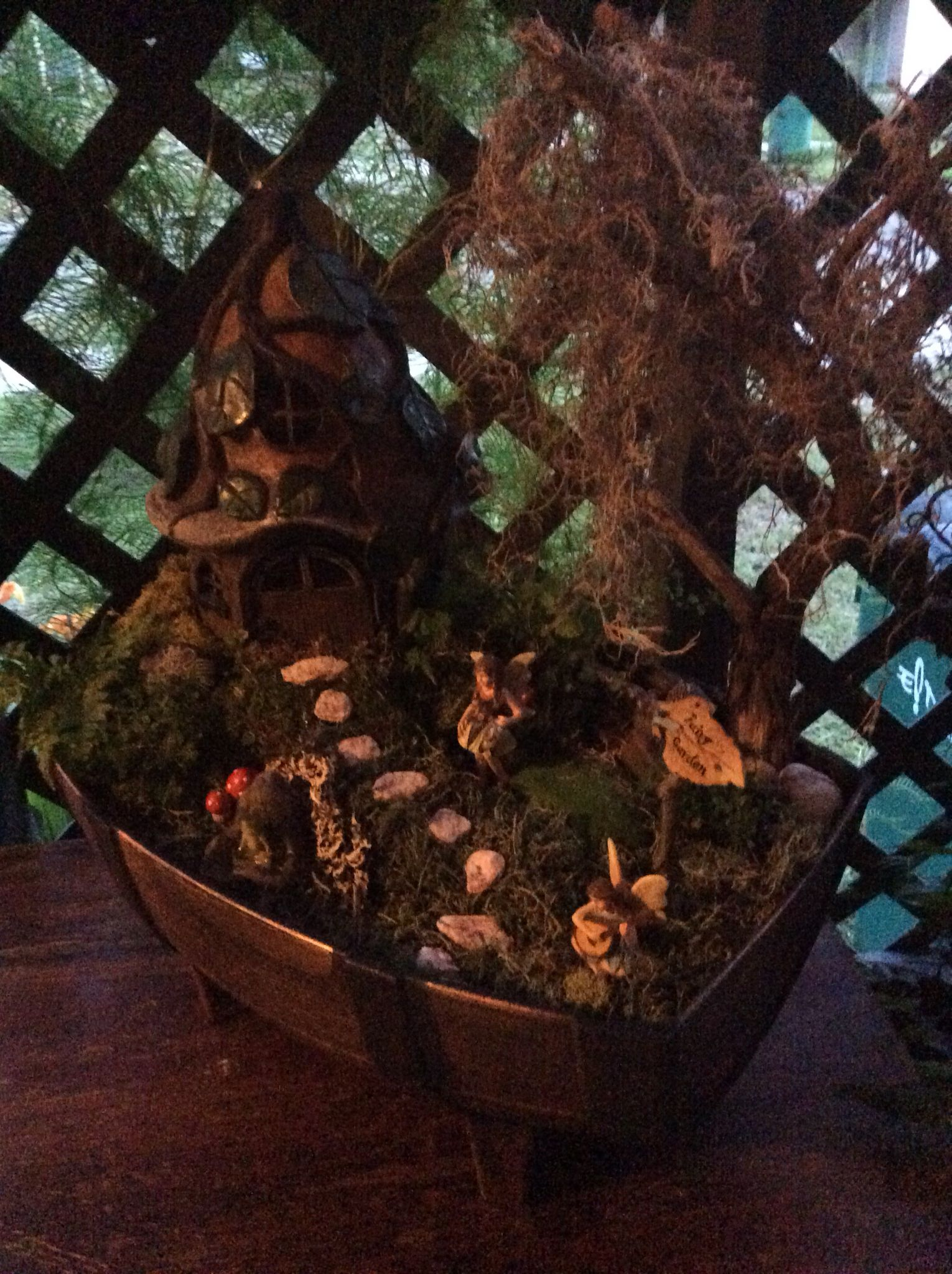 My first fairy garden - learned that anyone can do this and it's fun!