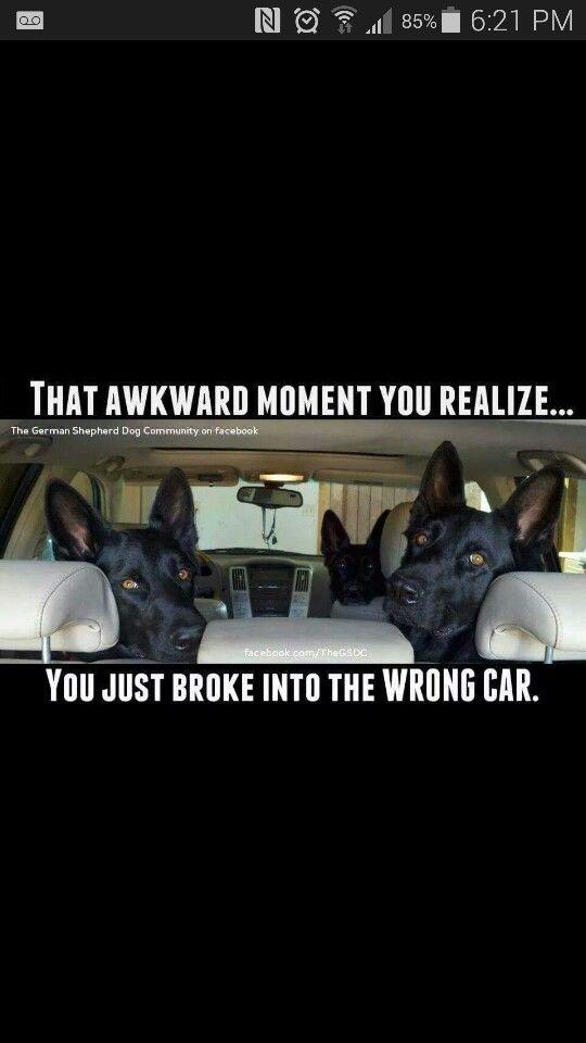 Whoops!