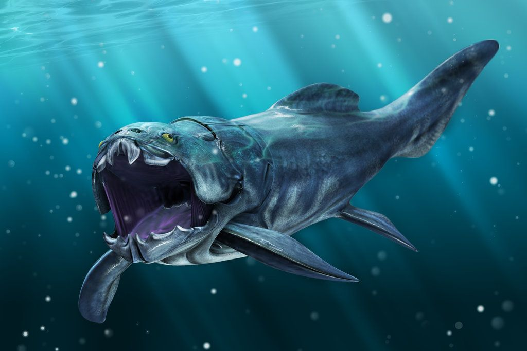 Dunkleosteus - Facts and Pictures | Prehistoric animals, Animals, Deep sea  creatures