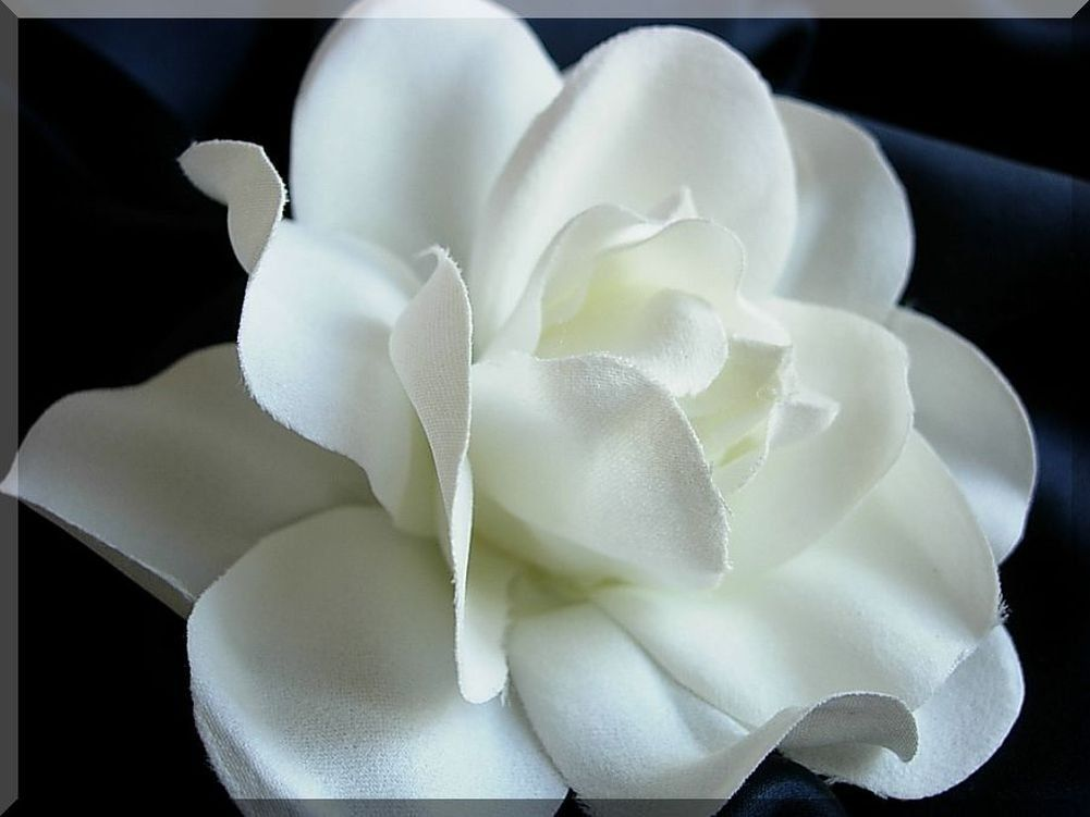 White Hand Crafted Silk Gardenia Flower Hair Clip Wedding Check Out The Image By Visiting Th With Images Flower Hair Clips Wedding Wedding Hair Clips Flower Hair Clips