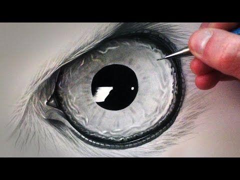 How to Draw an Owl Eye - YouTube
