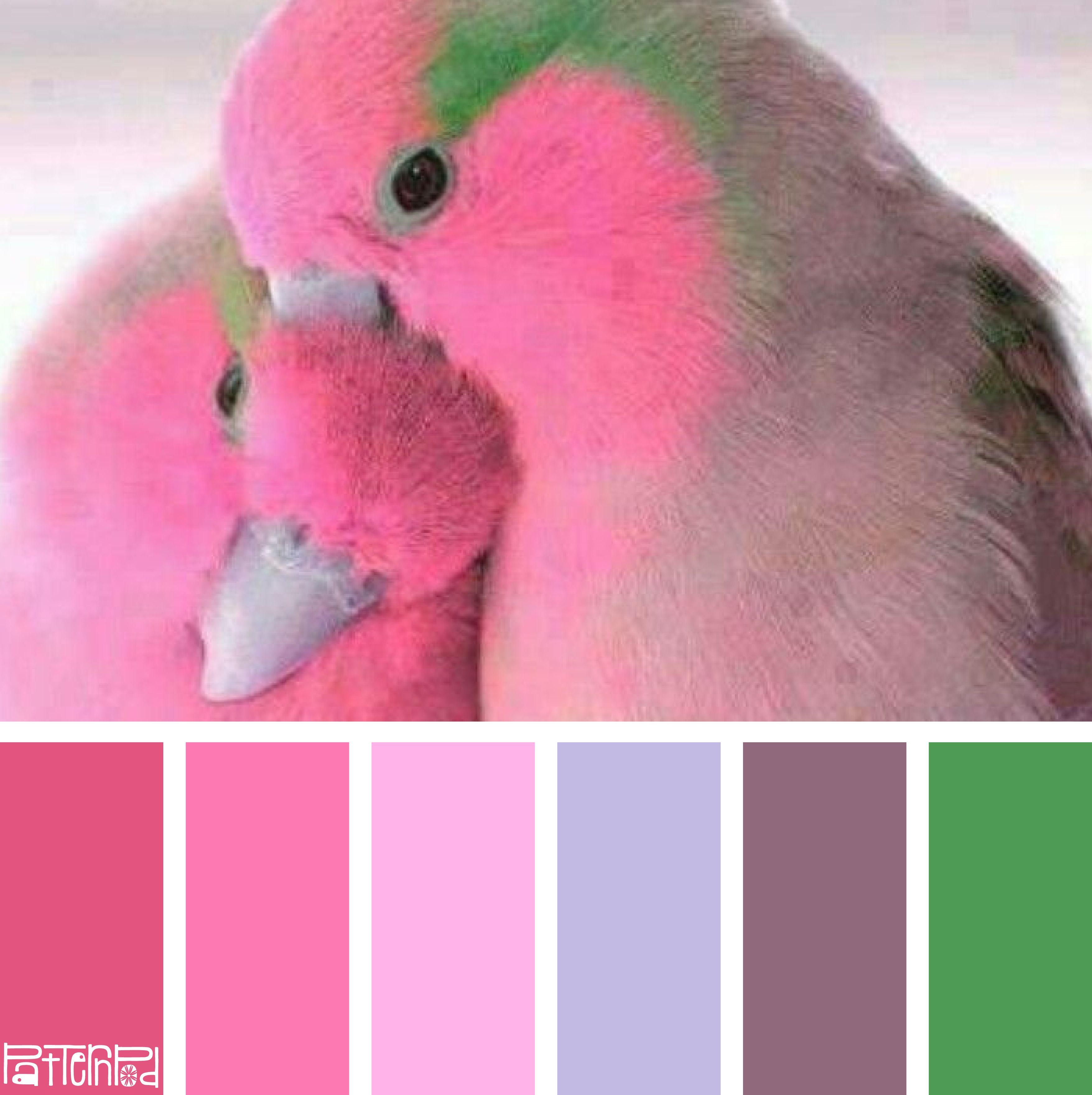 Farb-und Stilberatung mit www.farben-reich.com - | Sommer ...