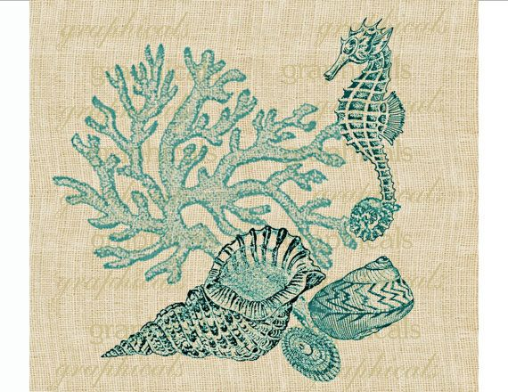 Vintage coral Seahorse shells Digital download graphic image for iron on fabric transfer burlap decoupage pillows tote bags paper No. 1701