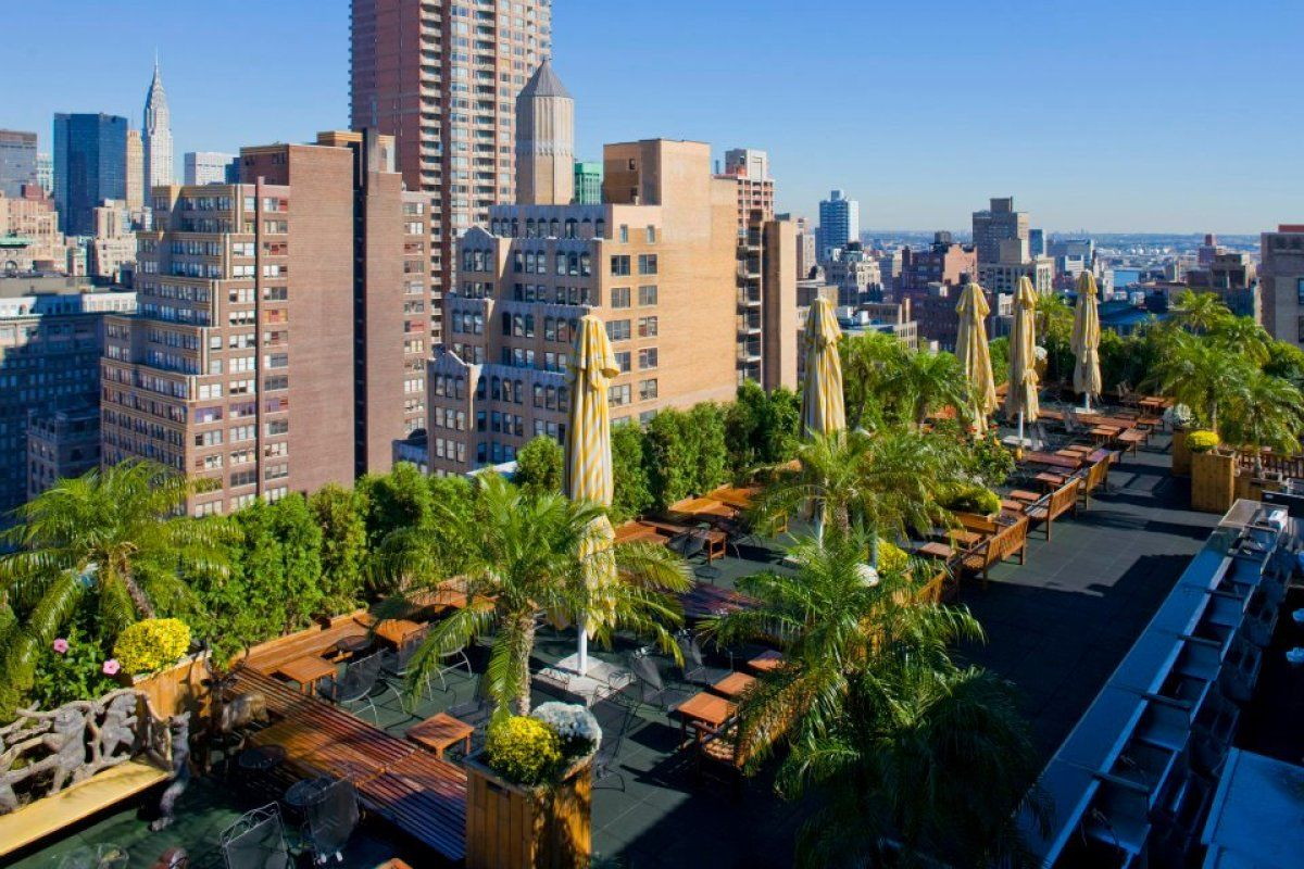 230 Fifth.......Best Rooftop Bars In New York