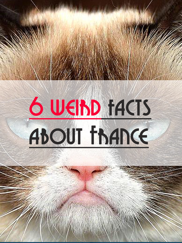A non-serious article if you are looking to know some unusual facts about France.   6 weirds fact about France. Repin and like please