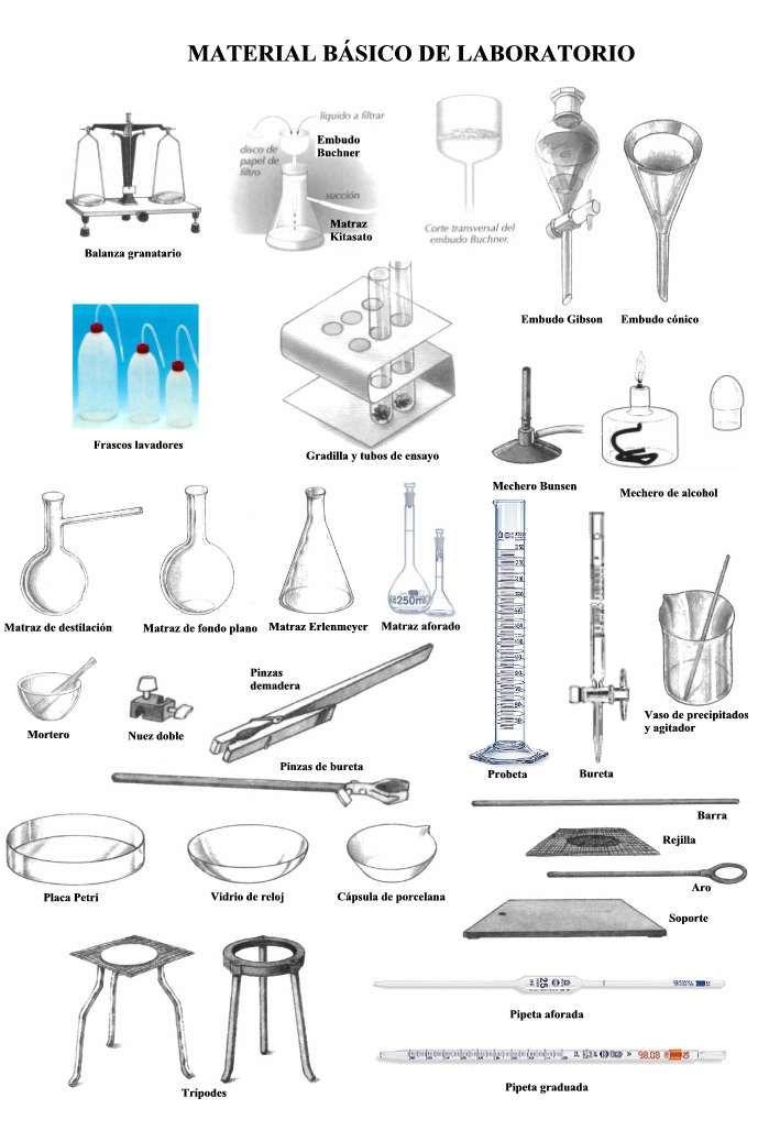 BIOLOGIA Y MICROBIOLOGIA: MATERIALES BASICOS USADOS EN EL ...