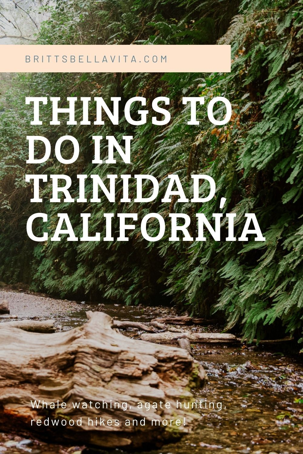 Things to Do in Trinidad, California | Best Hiking