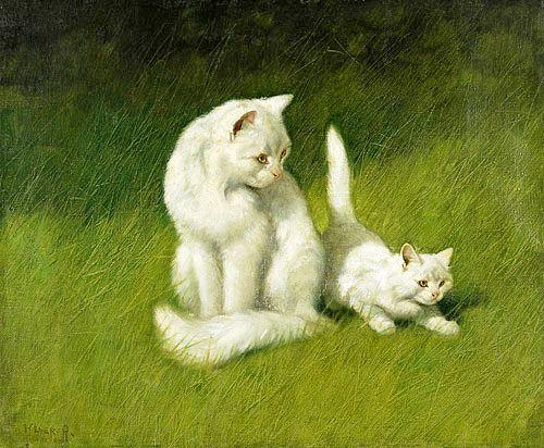 Arthur Heyer - Angora-Katze und Kätzchen