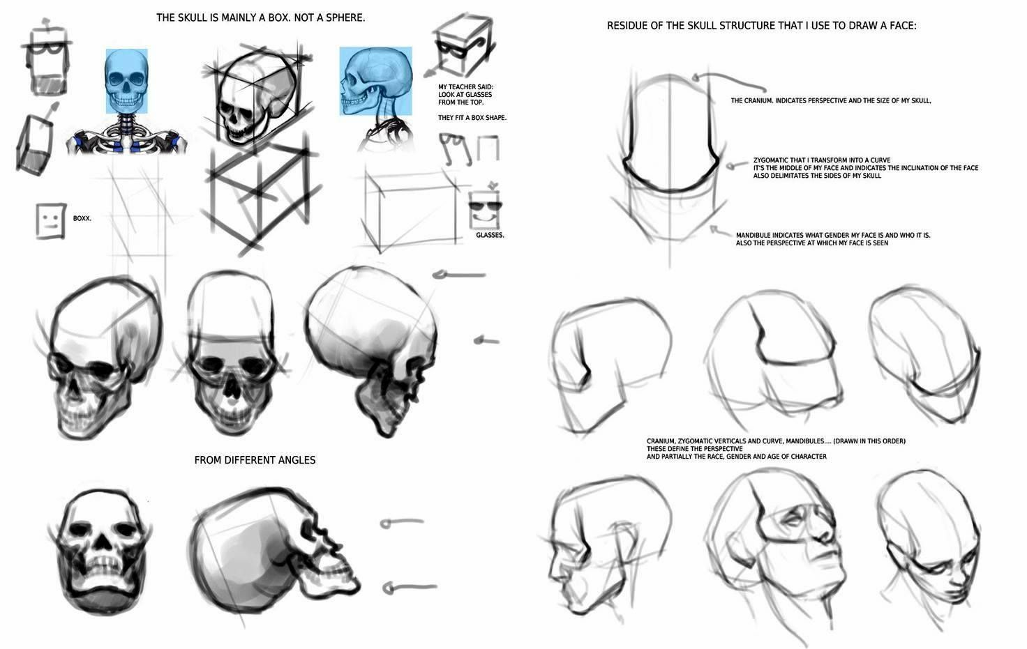 Pin de angels en Anatomia i Art 1 | Pinterest | Dibujar cabezas ...